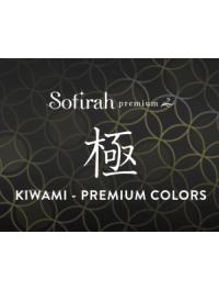 Premium Series (C) ~KIWAMI  (59)
