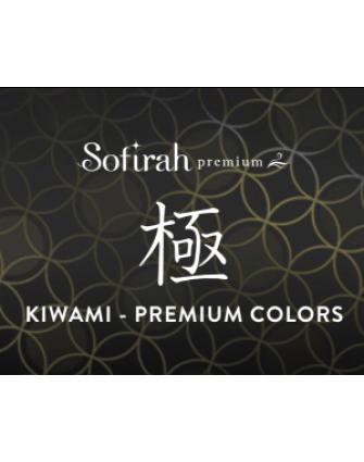 Premium Series (C) ~KIWAMI