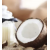 Coconut & White Ginger [9068]