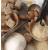 Vanilla Bean & Sugarcane [9064]