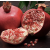 Pomegranate & Fig [9063]
