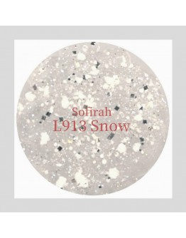 L913 Snow