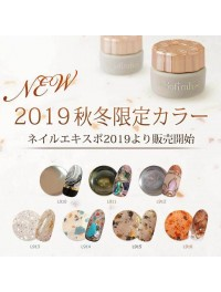 2019 Nail Expo Limited Color (9)